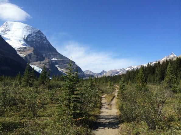 Der erste Abschnitt des Berg Lake Trail mit Blick auf Mount Robson (Foto: Lisa Feldmann)