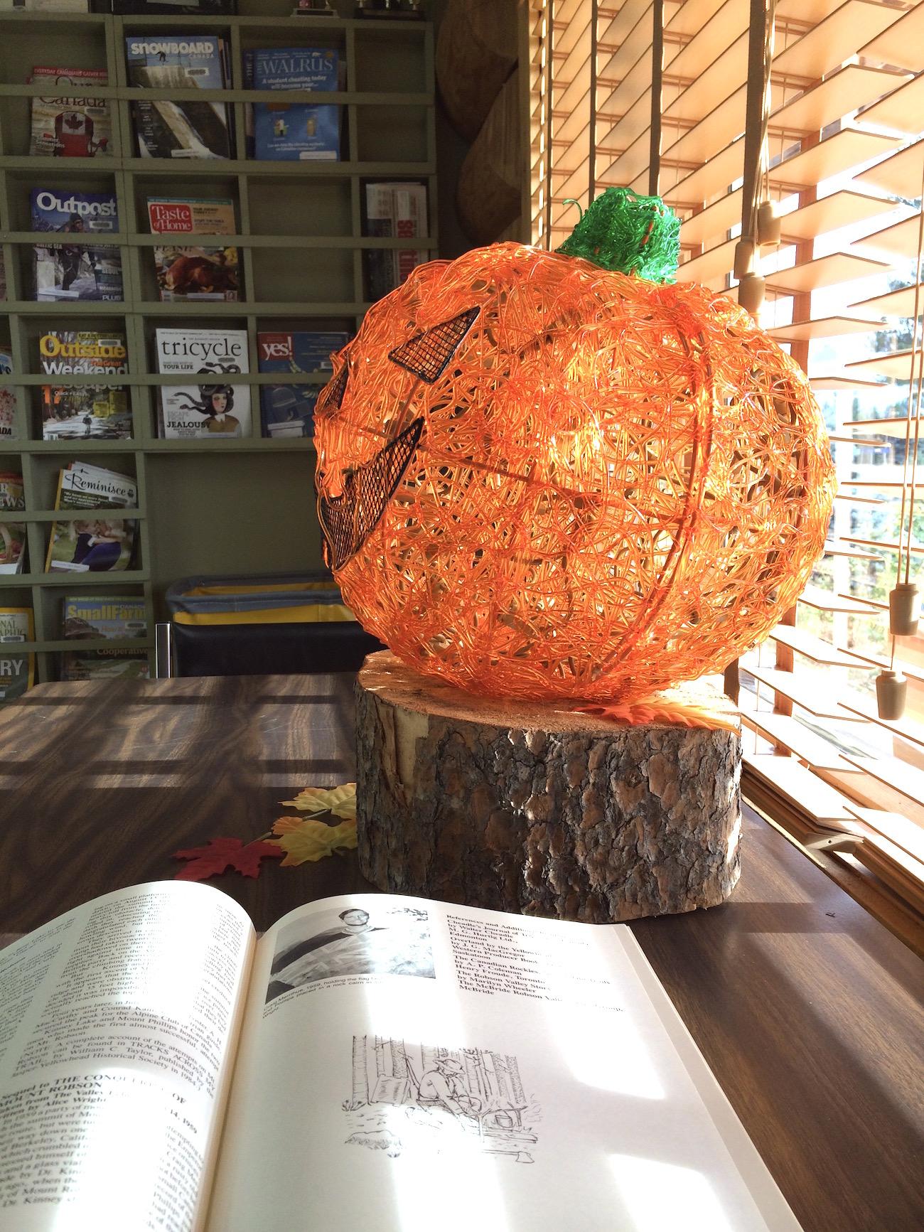 In der Bibliothek in Valemount (Foto: Lisa Feldmann)