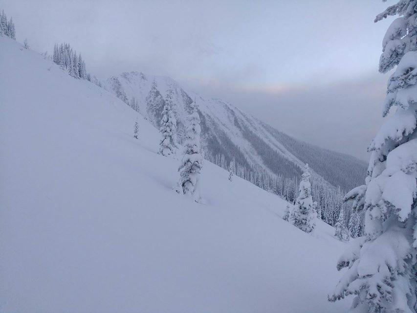 Die Berge sind mit pudrigem Schnee bedeckt, die Bäume in winterliche Gewänder gehüllt. Wonderful Valemount!